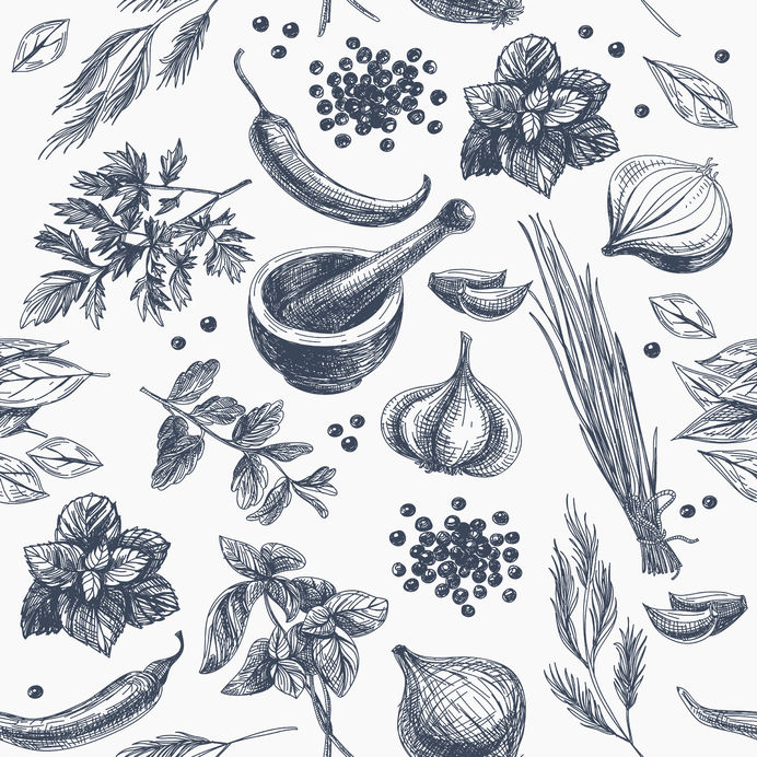 Vector pattern with herbs for thyroid health