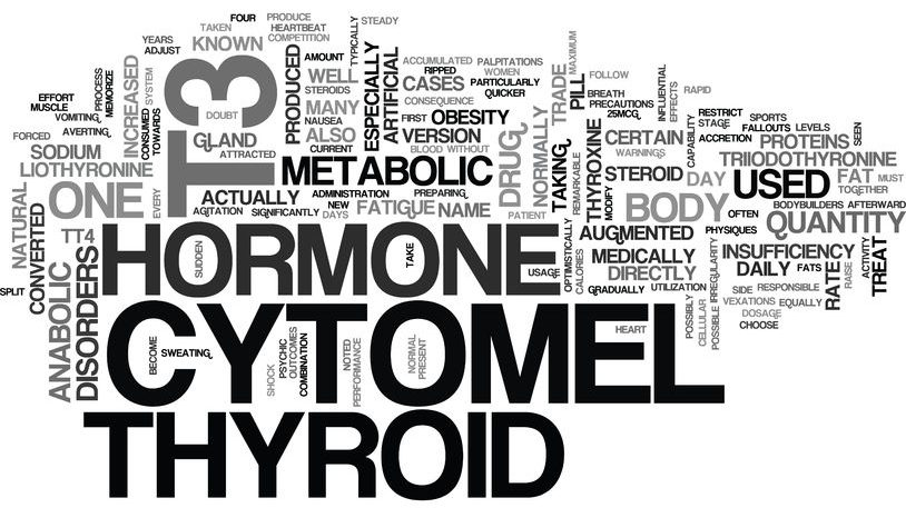 what is t cytomel text word cloud concept