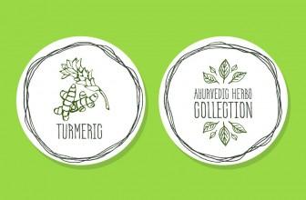 Turmeric and Curcumin for Your Thyroid