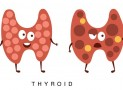 L-Tyrosine – It's Benefits For Your Thyroid