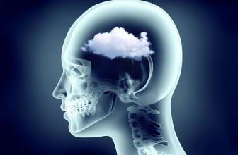Thyroid Brain Fog